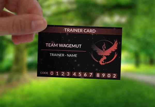 Pokemon Go | Trainer Card | mit Code und Name